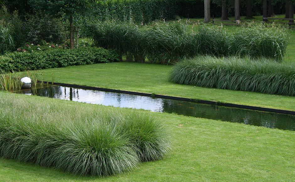 Trawy w ogrodzie czyli spos b na to aby stworzy for Ornamental grass border design