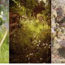 Lekcja stylu – ogród rustykalny